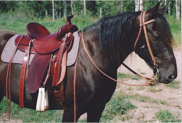 Trail Rider Smoothie